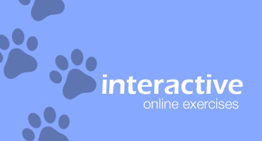 Interactive Online Exercises