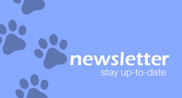 Stay up-to-date with our newsletter